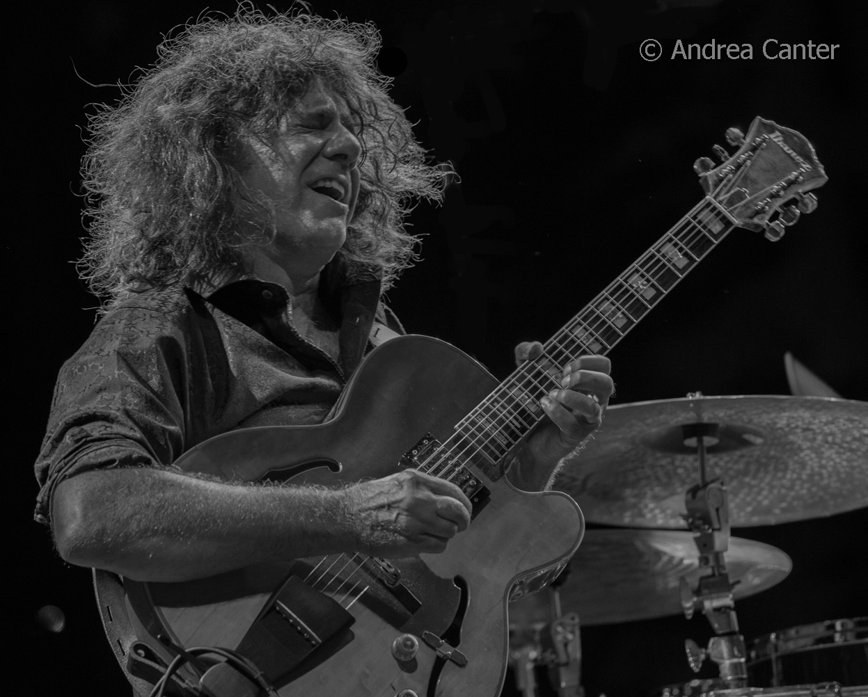 cool nights pat metheny